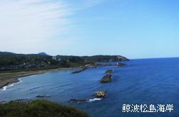 眼下に広がる日本海の眺望…