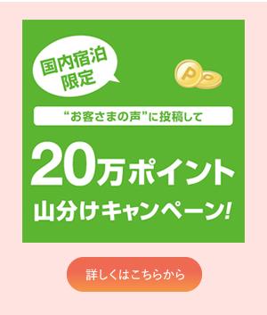 20万ポイント山分けキャンペーン!